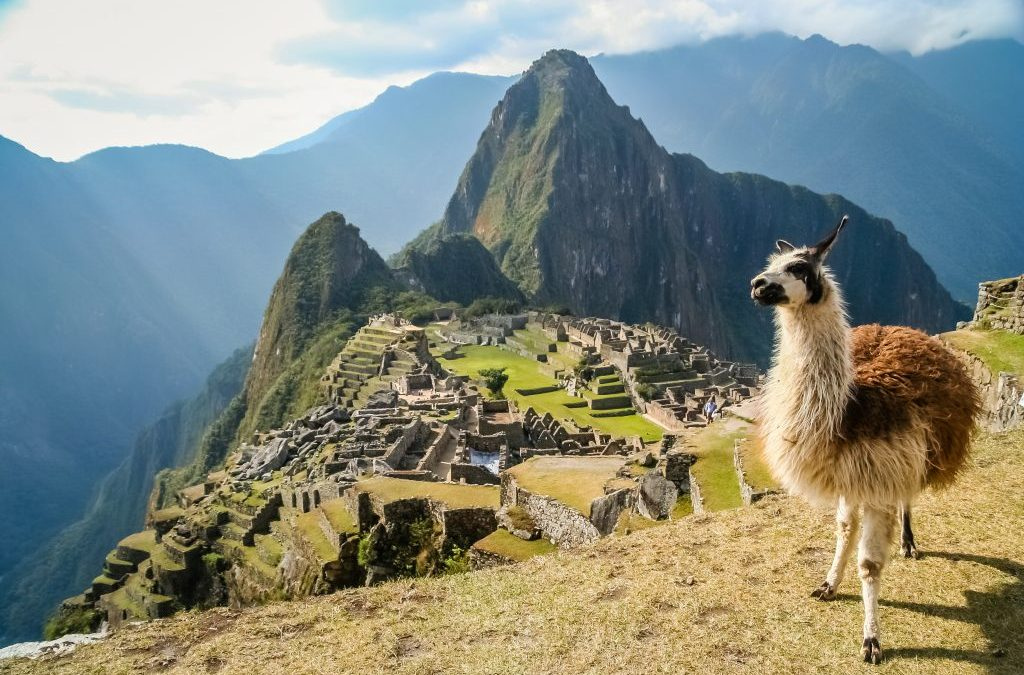 "Machu Picchu competes as ""Destiny Top of Dream"" in a virtual world contest"